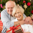 Senior couple with gifts in front of Christmas tree — Stockfoto