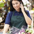 Hispanic Frau arbeitet in florist — Stockfoto #11884122
