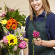 Stock Photo: Womworking in florist