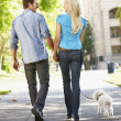 Royalty-Free Stock Photo: Couple walking with dog in city street