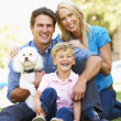 Couple in city park with young son and dog — Stok fotoğraf