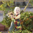 Young child on allotment - Stock Photo