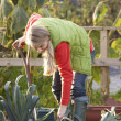 Woman working on allotment — Stock Photo