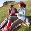 Stock Photo: Women on country picnic