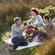 Stock Photo: Friends on country picnic