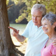 Senior couple at lake together — Stockfoto