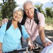 Stock Photo: Senior couple with map on country bike ride