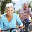 Stock Photo: Senior couple on country bike ride