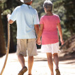 Stock Photo: Senior couple on country walk