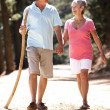 Senior couple on country walk — Stock Photo