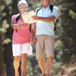 Senior couple reading map on country walk — Stock Photo