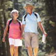 Senior couple on country walk — Stock Photo #11885991