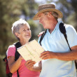 Stock Photo: Senior couple reading map on country walk
