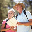 Senior couple reading map on country walk — Stock Photo #11885995