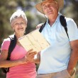 Senior couple reading map on country walk — Stock Photo #11885997