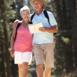 Senior couple reading map on country walk — Stock Photo #11886002