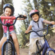 Stock Photo: Young children on bikes in country
