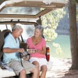 Senior koppel op land picknick — Stockfoto