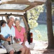 Senior couple on country picnic — Stockfoto