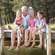 Senior couple sitting by lake with grandchildren — Stock Photo #11886079