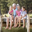 Senior couple sitting by lake with grandchildren — Stock Photo