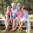 Senior couple sitting by lake with grandchildren - Stok fotoğraf