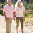 Senior couple on country walk — Stockfoto