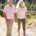 Senior couple on country walk — Stock Photo