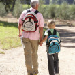 Senior man and grandson on country walk — Stock Photo #11886154