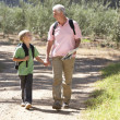 Senior man and grandson on country walk — Stock Photo #11886157