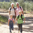 Senior couple and grandchildren on country walk — Stock Photo