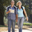 Couple with map on country walk — Stock Photo #11886204