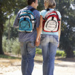 Couple on country walk — Foto de Stock