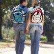 Couple on country walk — Foto de stock #11886210