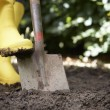 Woman digging in garden — Stock Photo #11887000