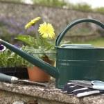 Bodegón de equipo de jardinería — Foto de Stock   #11887106