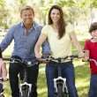 Family riding bikes in park — Stock Photo #11887549