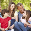 Multi generation Hispanic family in park — Stock Photo #11887623