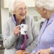 Senior women preparing meal together — Stock Photo #11888789
