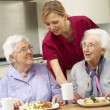 Stock Photo: Senior women with carer enjoying meal at home