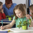 Girl learning about plants in school class - Stock Photo