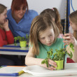 Girl learning about plants in school class — Stock Photo