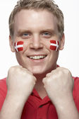 Young Male Sports Fan With Danish Flag Painted On Face — Stock Photo