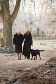 Senior Couple On Winter Walk With Dog Through Frosty Landscape — Stock Photo