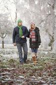 çift kış üzerinde donuk peyzaj ile yürümek — Stok fotoğraf