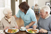 Senior Couple Being Served Meal By Carer — Stockfoto