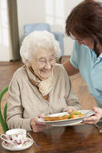 Senior Woman Being Served Meal By Carer — Stock Photo
