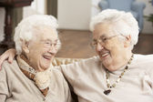 Two Senior Women Friends At Day Care Centre — Stok fotoğraf