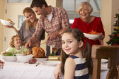 Family serving Christmas dinner — Stockfoto