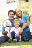 Couple in city park with young son and dog — Stock Photo